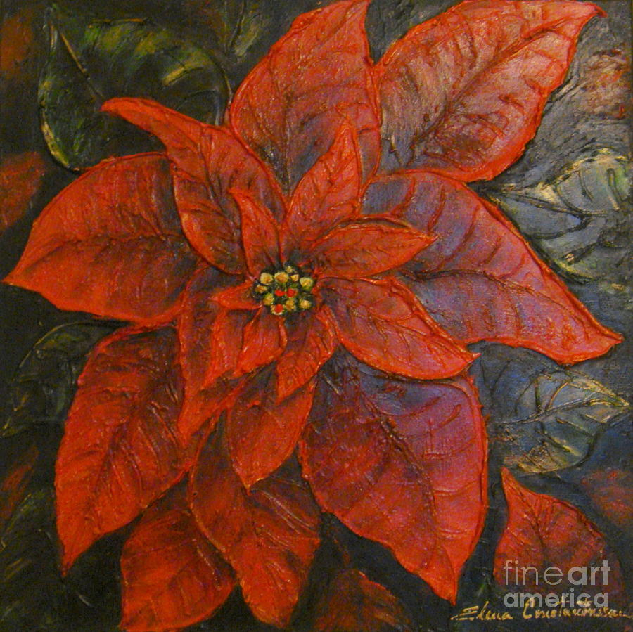 Poinsettia Painting - Poinsettia/ Christmass Flower by Elena  Constantinescu
