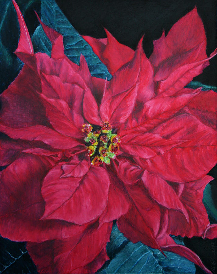 Poinsettia Painting - Poinsettia II Painting by Marna Edwards Flavell