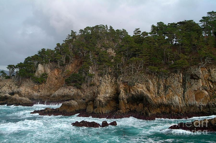 Point Lobos Coastal View Photograph