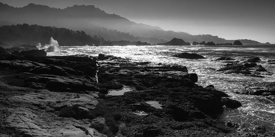Point Lobos Photograph - Point Lobos by Mike Herdering