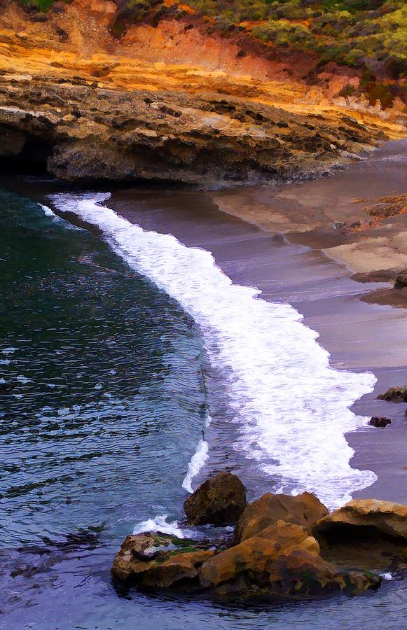 Pt. Lobos Photograph - Point Lobos by Ron Regalado
