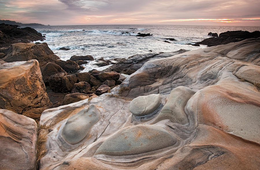 Point Lobos State Park Photograph by Doug Steakley