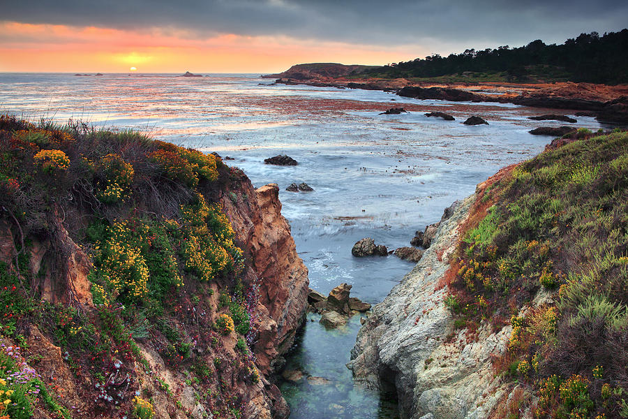 Sunset Photograph - Point Lobos State Reserve 3 by Emmanuel Panagiotakis