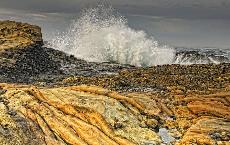 Wave Photograph - Point Lobos Wave by Julianne Bradford