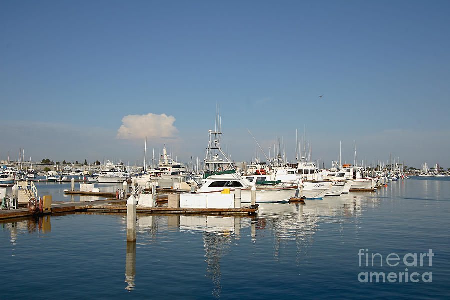 Point Loma Photograph - Point Loma Marina by Russell Christie
