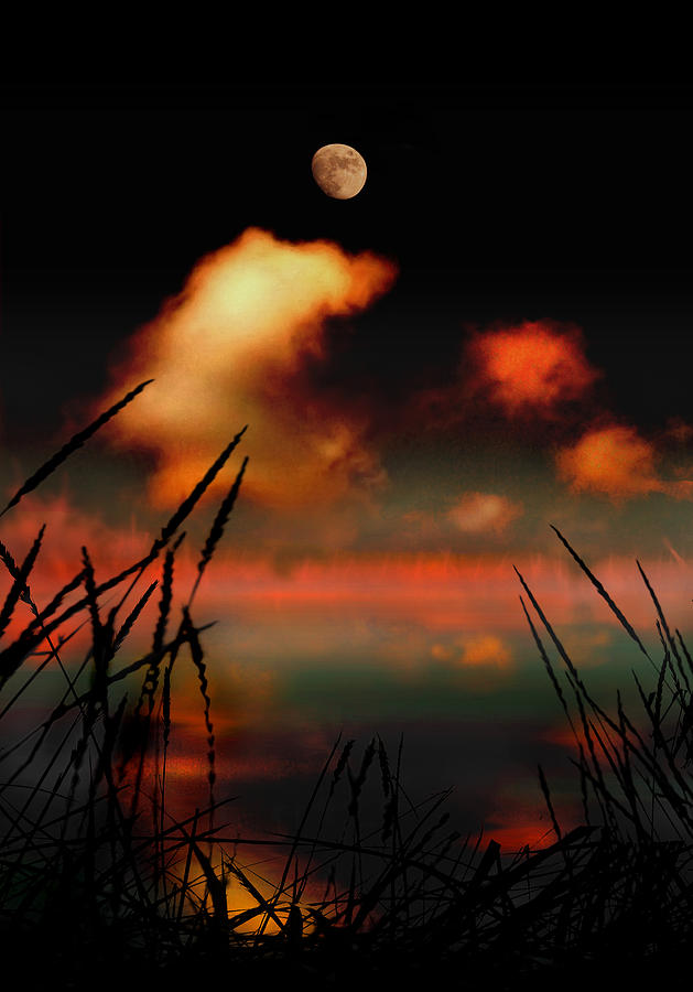 Landscape Photograph - Pointing At The Moon by Mal Bray
