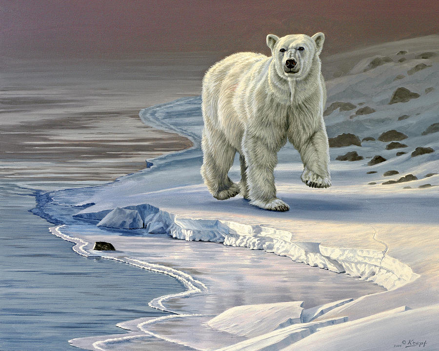 Wildlife Painting - Polar Bear on Icy Shore    by Paul Krapf