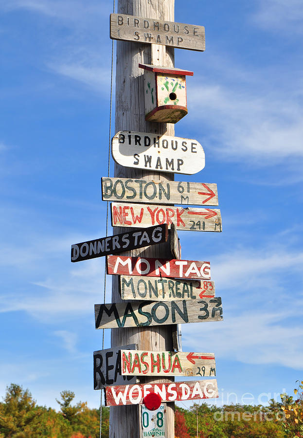 Pole of Many Directions by Staci Bigelow