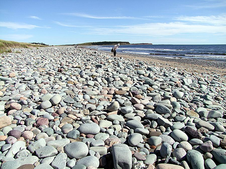 Rocks Photograph - Polished By The Sea by George Cousins