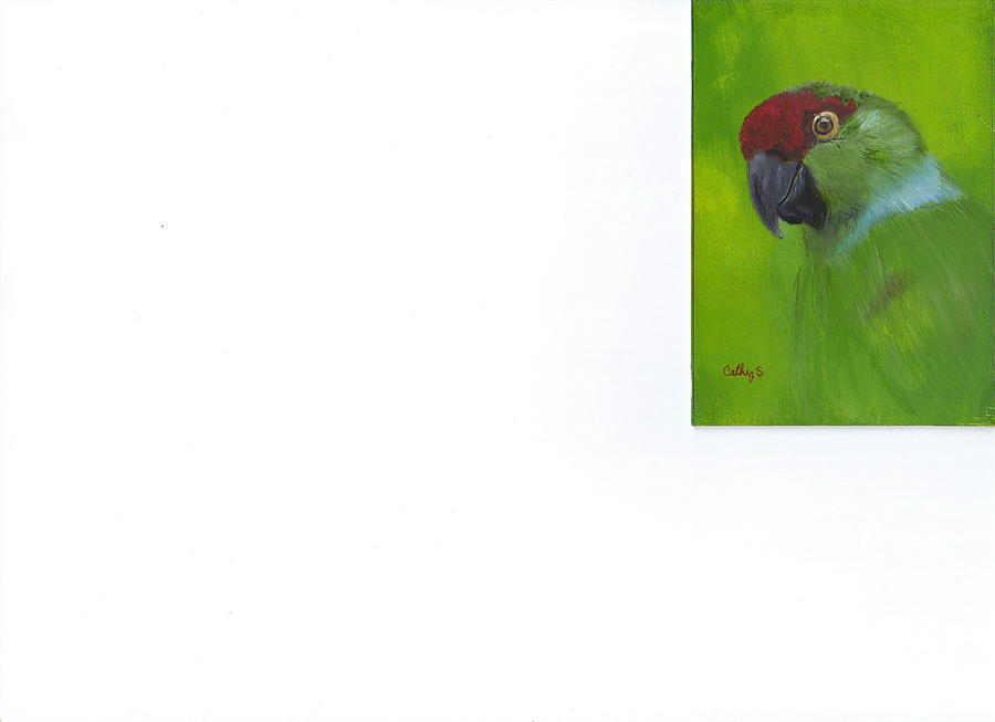 Parrots Painting - Polly by Catherine Swerediuk