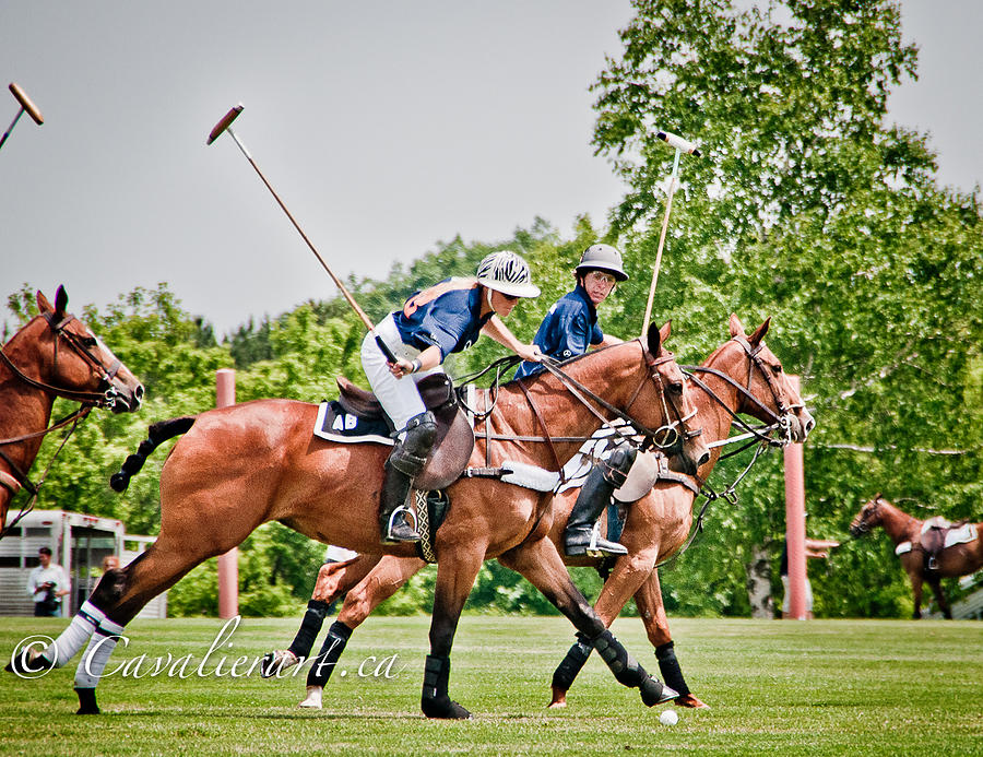 Polo Photograph - Polo Play I by Sherri Cavalier