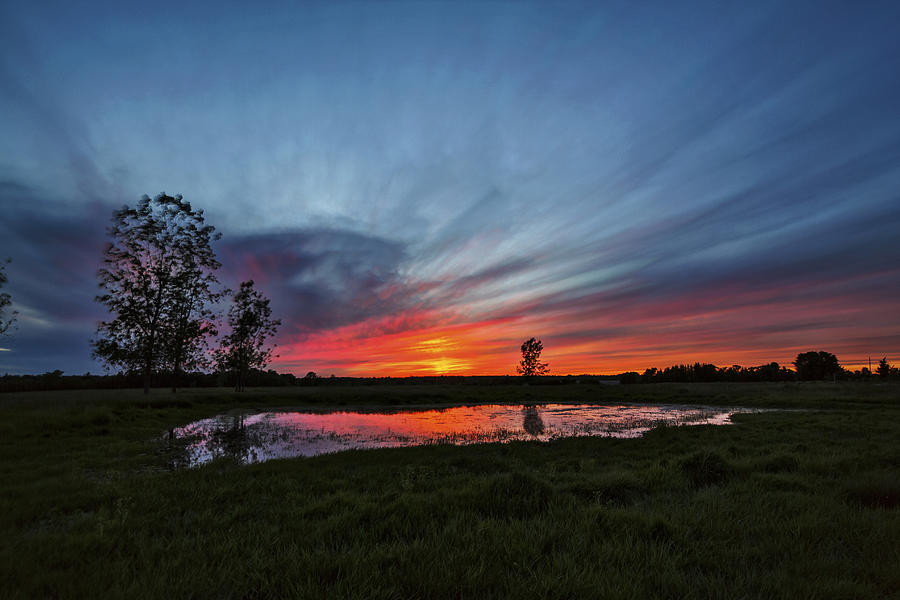 Matt Molloy Photograph - Pond In The Pasture by Matt Molloy