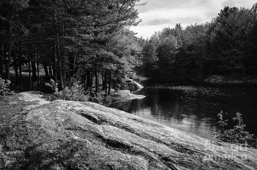 Pondside Photograph