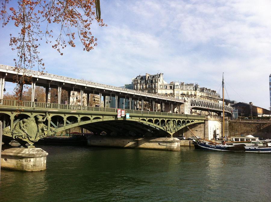 Paris Photograph - ponte verde a Parigi by Tila Gun