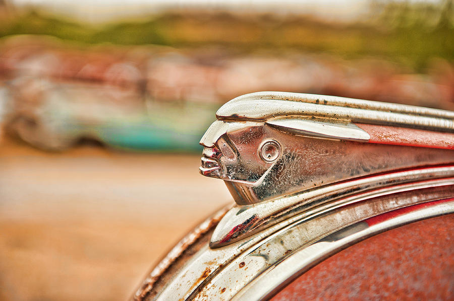 Pontiac Indian by George Buxbaum