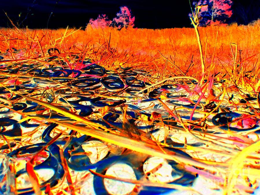 Abstract Photograph - Pop Art B06 by Rrrose Pix