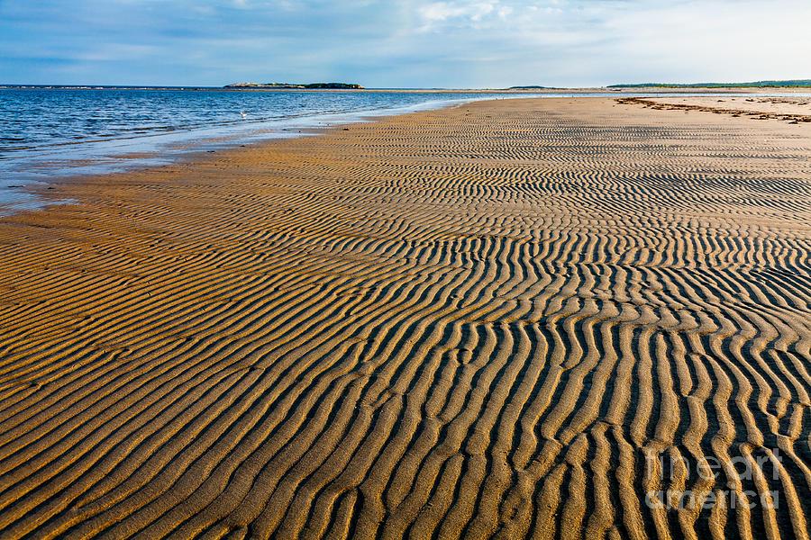 America Photograph - Popham Beach by Susan Cole Kelly