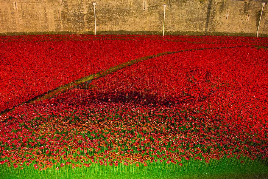 Poppies Photograph - Poppies For The Fallen by Andrew Lalchan