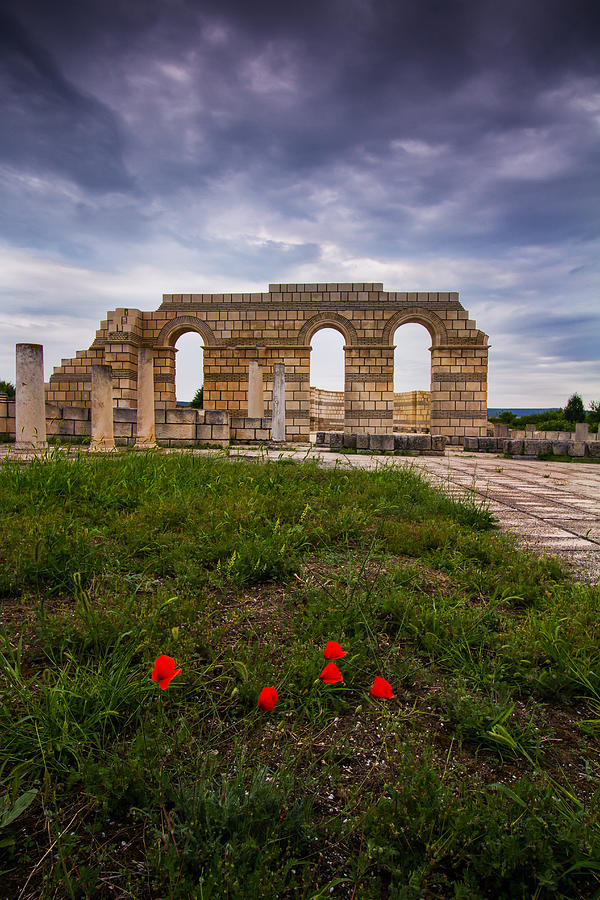 Past Photograph - Poppies In The Ruins by Eti Reid