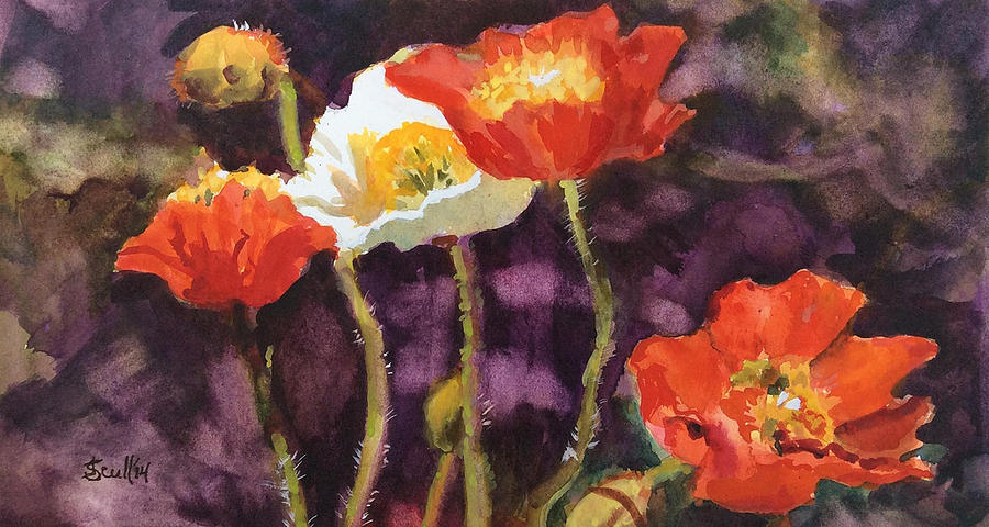Poppies by Judith Scull