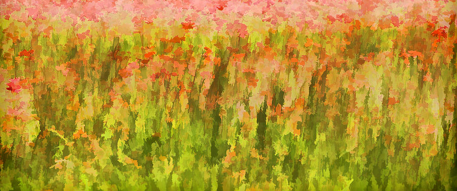 Flowers Painting - Poppies Of Tuscany IIi by David Letts