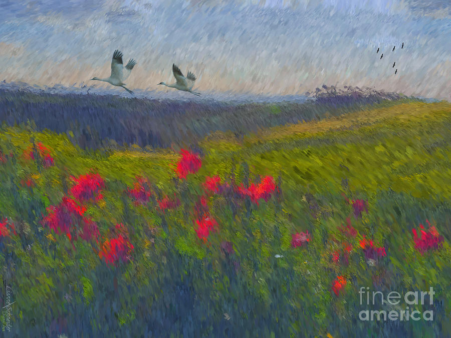 Poppies Digital Art - Poppies Of Tuscany by Lianne Schneider