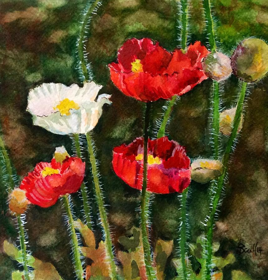 Poppies Three by Judith Scull