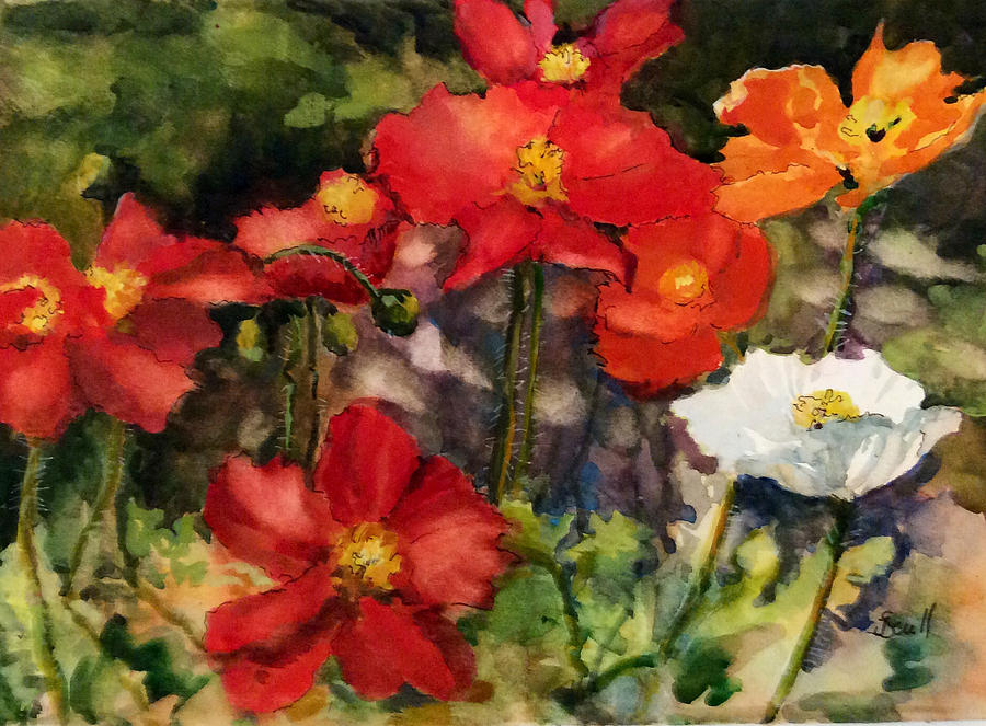 Poppies Two by Judith Scull