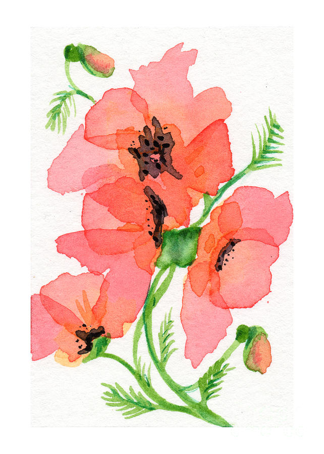 Poppy painting by amy elyse neer watercolor painting painting poppy by amy elyse neer mightylinksfo