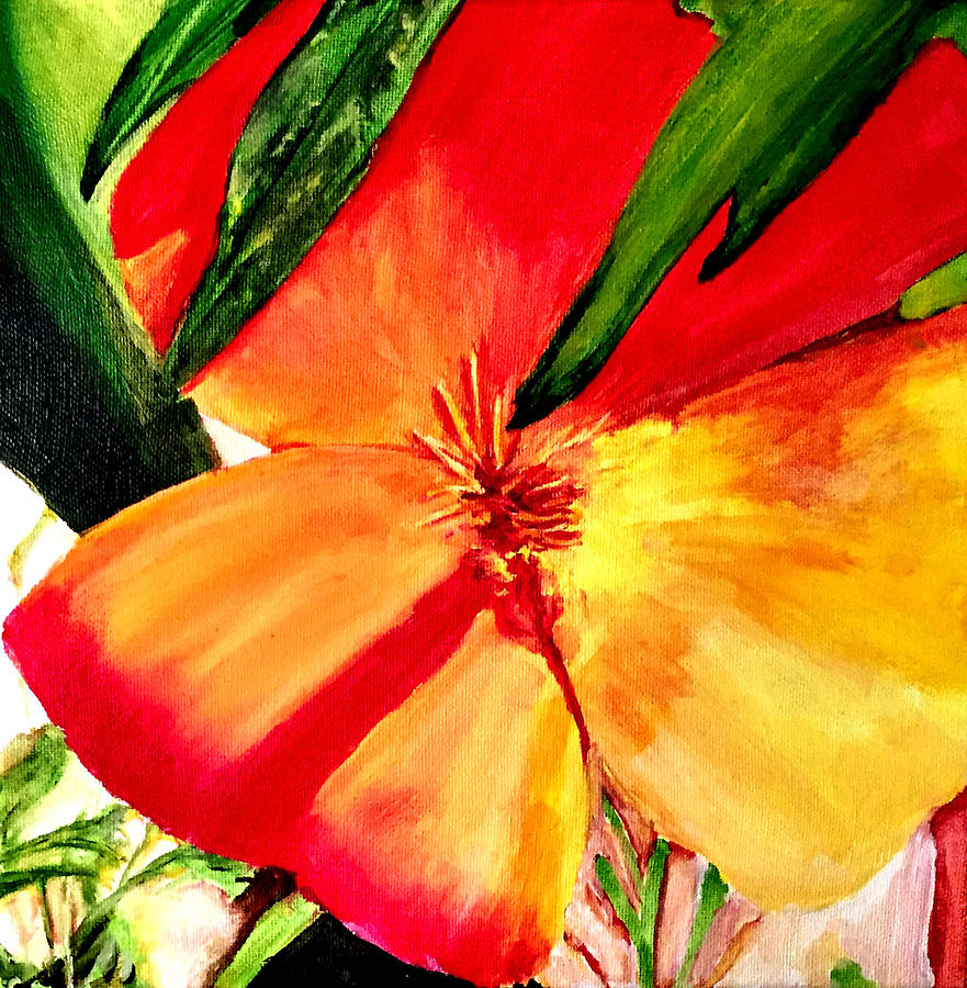Acrylic Painting - Poppy by Dana Patterson