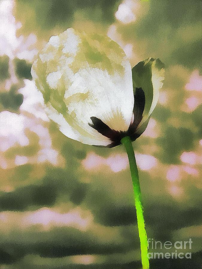 Odon Painting - Poppy Flower In The Sky  by Odon Czintos