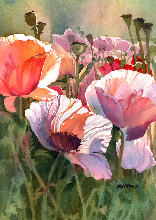 Watercolor Painting - Poppy Madness by Kris Parins