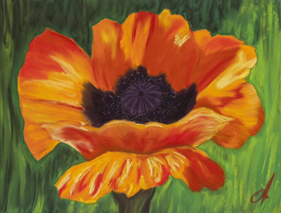 Poppy Pastel - Poppy Number 2 by Dana Strotheide