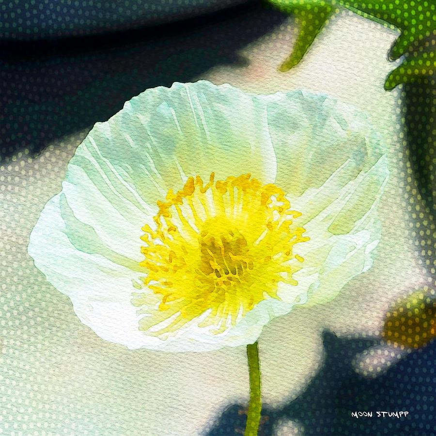 Garden Photograph - Poppy Series - Beside The Sidewalk by Moon Stumpp