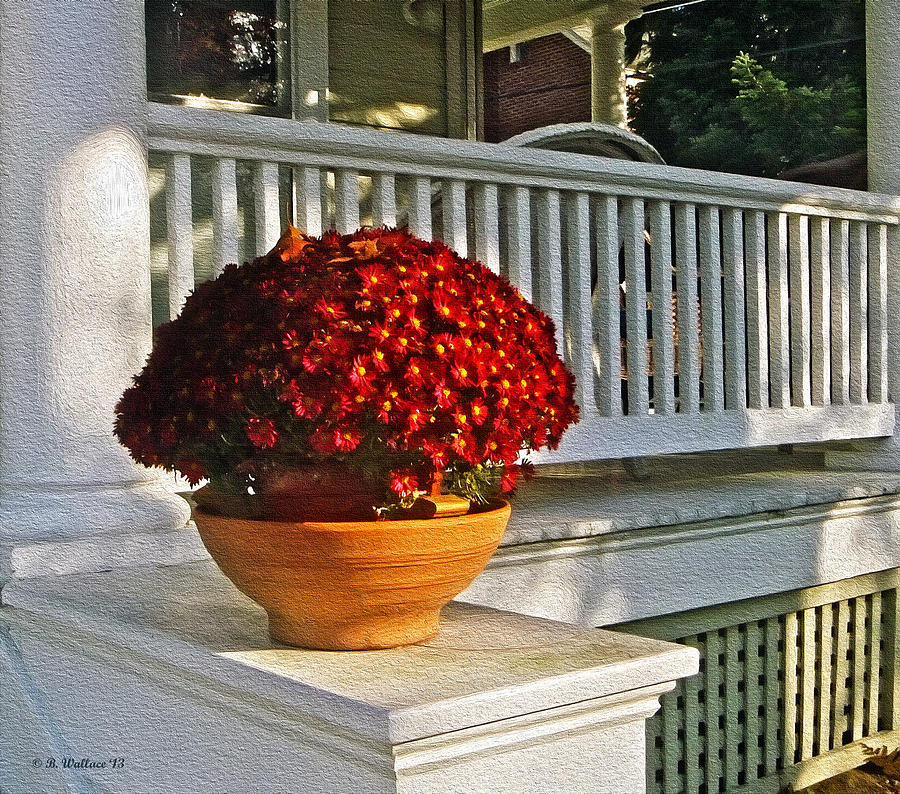 2d Photograph - Porch Beauty by Brian Wallace
