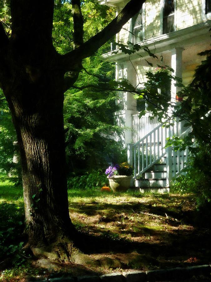 Dappled Sunlight Photograph - Porch With Pot Of Chrysanthemums by Susan Savad