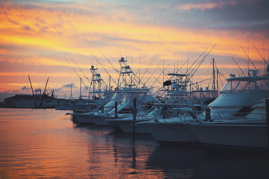 Port Photograph - Port Aransas Marina Sunset by Ray Devlin