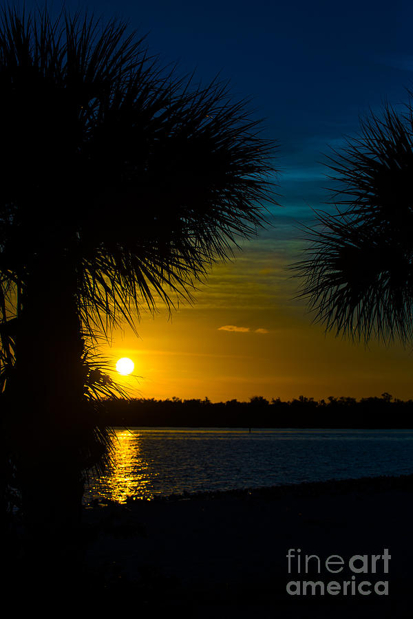 Port Charlotte Beach Photograph - Port Charlotte Beach Sunset In January by Anne Kitzman
