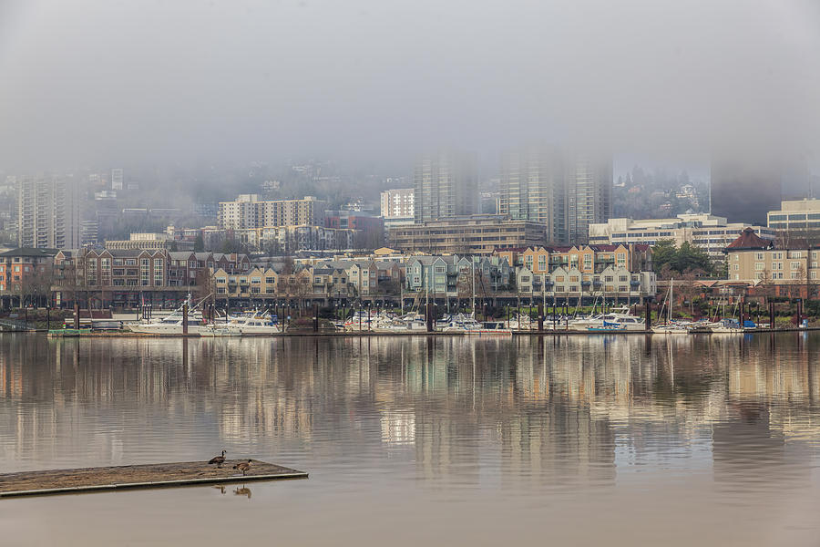 Happy Valentines Day Photograph - Portland Oregon Foggy Morning by David Gn