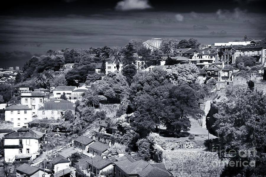 Landscape Photograph - Porto Nature by John Rizzuto