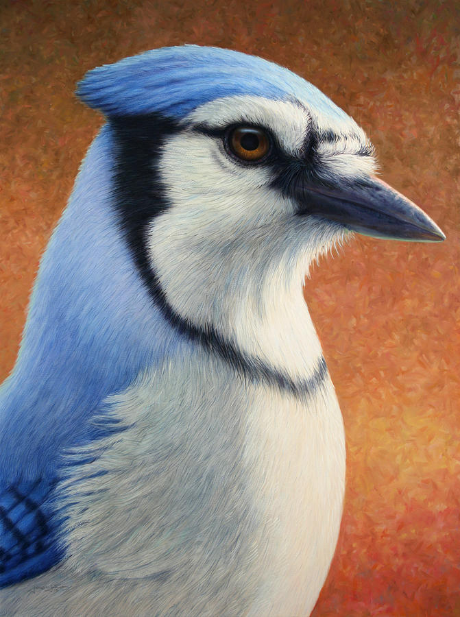 Bluejay Painting - Portrait Of A Bluejay by James W Johnson