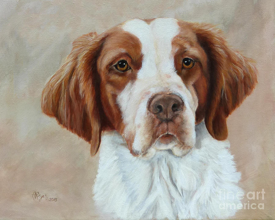 Brittany Spaniel Painting - Portrait of a Brittany Spaniel by Amy Reges