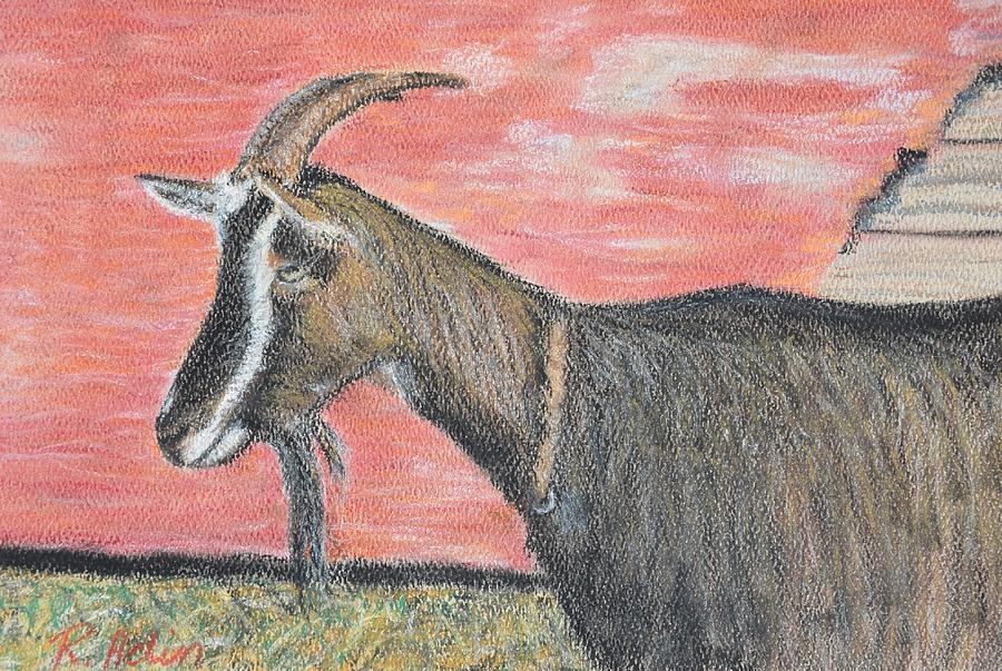 Goat Painting - Portrait Of A Goat by Renee Helin
