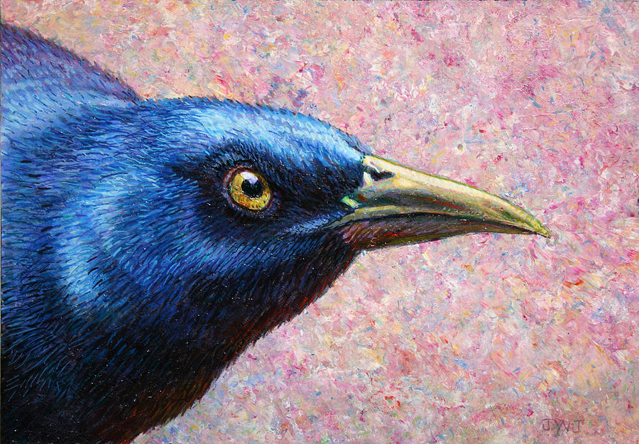 Grackle Painting - Portrait Of A Grackle by James W Johnson
