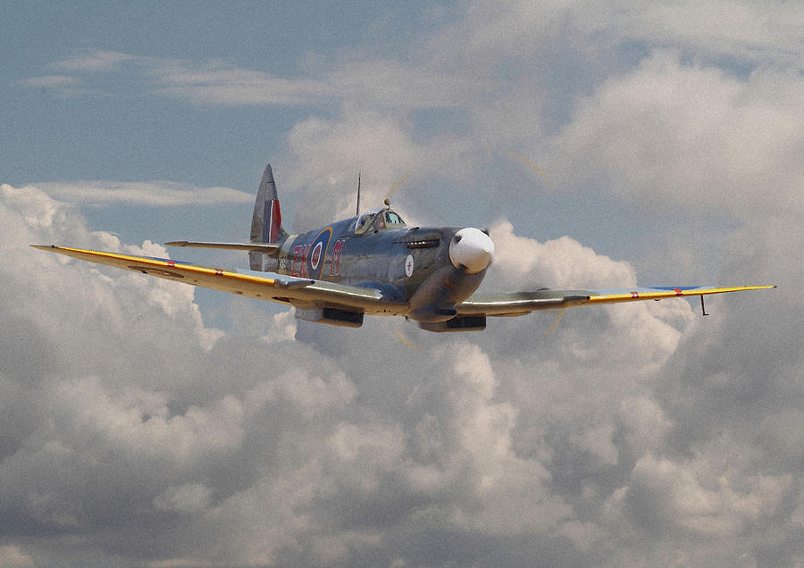 Aircraft Digital Art - Portrait Of An Icon by Pat Speirs