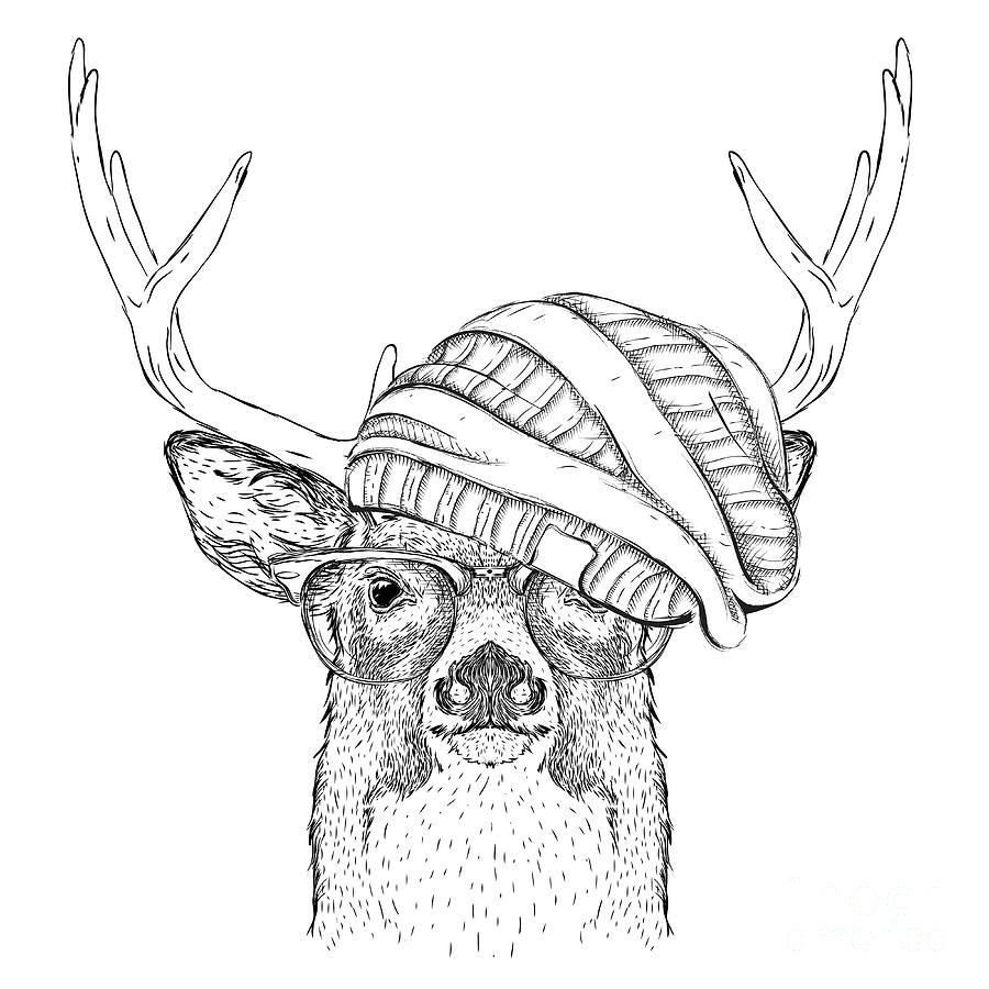 Deer Digital Art - Portrait Of Deer In A Hat Vector by Sunny Whale