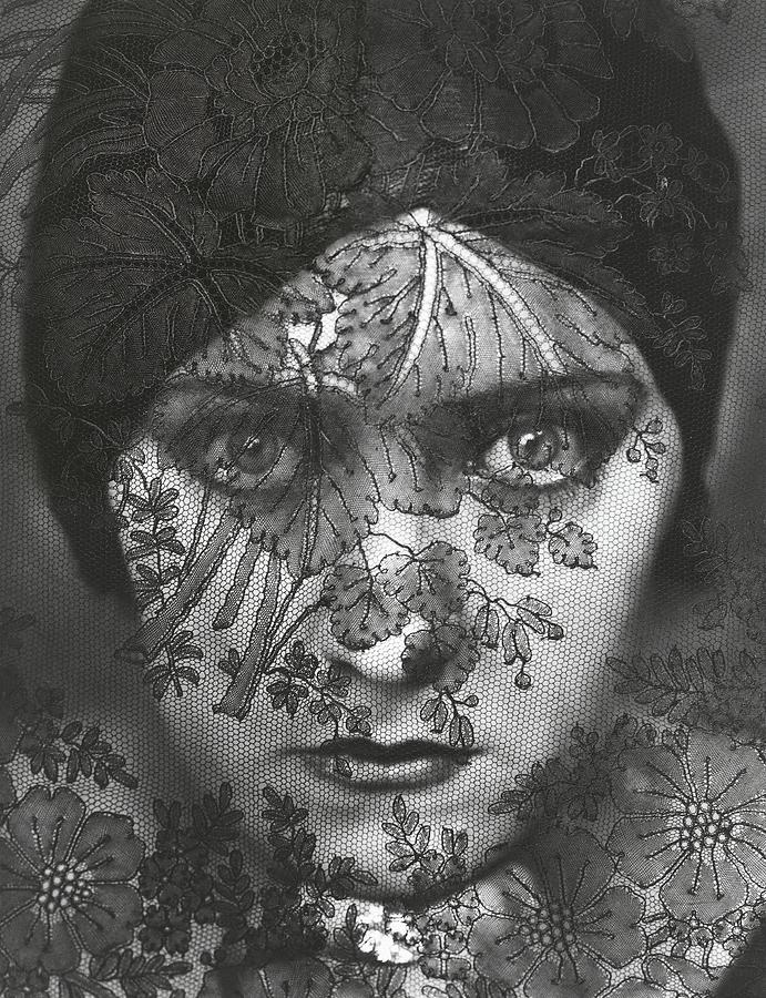 Portrait Of Gloria Swanson Behind Lace Photograph by Edward Steichen