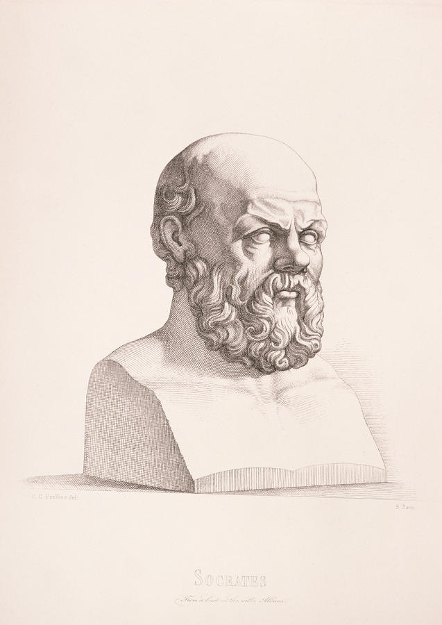 Male Drawing - Portrait Of Socrates by CC Perkins