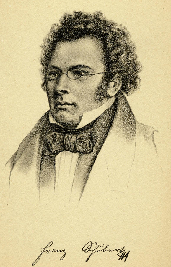 Image result for franz schubert abstract