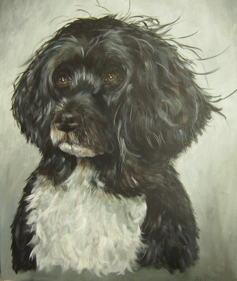 Portuguese Water Dog by Elizabeth Ellis